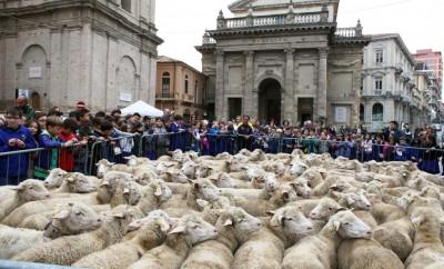 7-Lanciano Piazza_Plebiscito 2013_