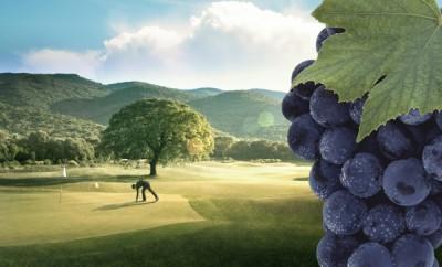 Golf-Vino-600x400